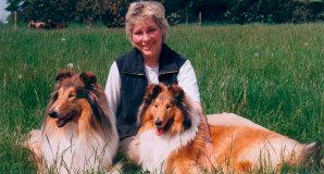 marianna-hunde